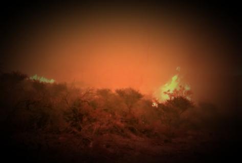 incendio1